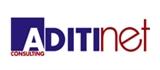 Aditinet Consulting