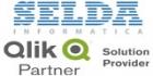 SELDA + Qlik Partner